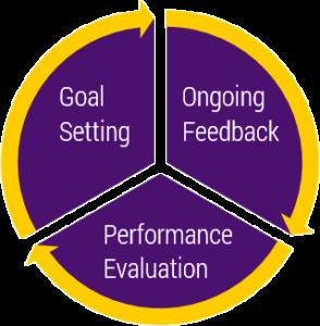 Performance Evaluation Goal